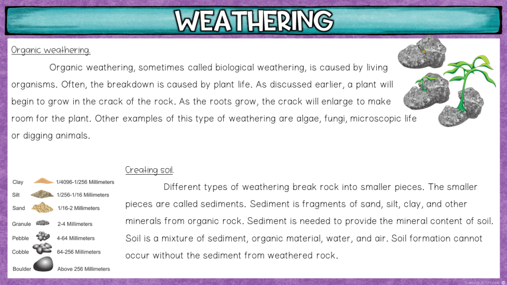 Using context clues to determine science vocabulary terms