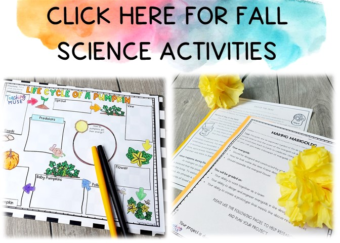 science activities for fall